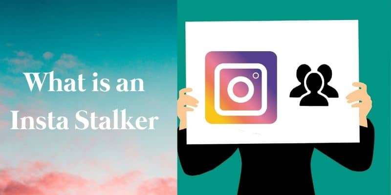 What is an Insta Stalker